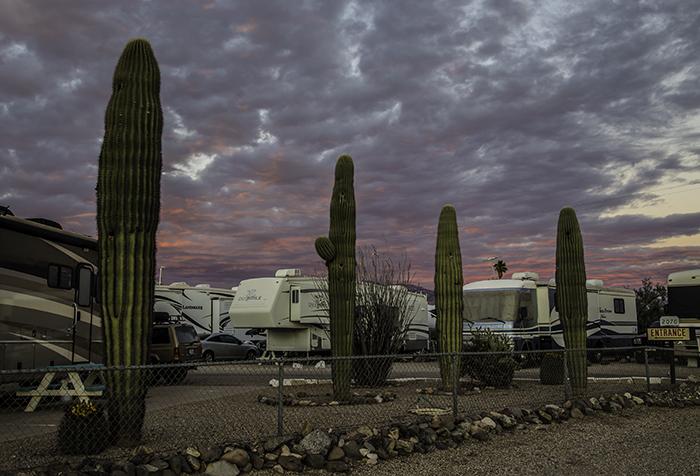Abendstimmung in Tucson, AZ