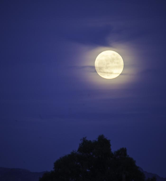 Moon in Tucson, AZ