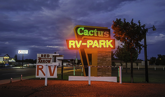 1 Cactus Neon beleuchtet
