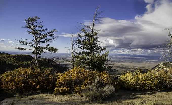 Mesa Verde National Park Colorado USA