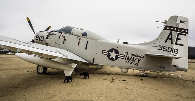 DOUGLAS EA-1F SKYRAIDER im  PIMA Air & Space Museum Tucson, Arizona